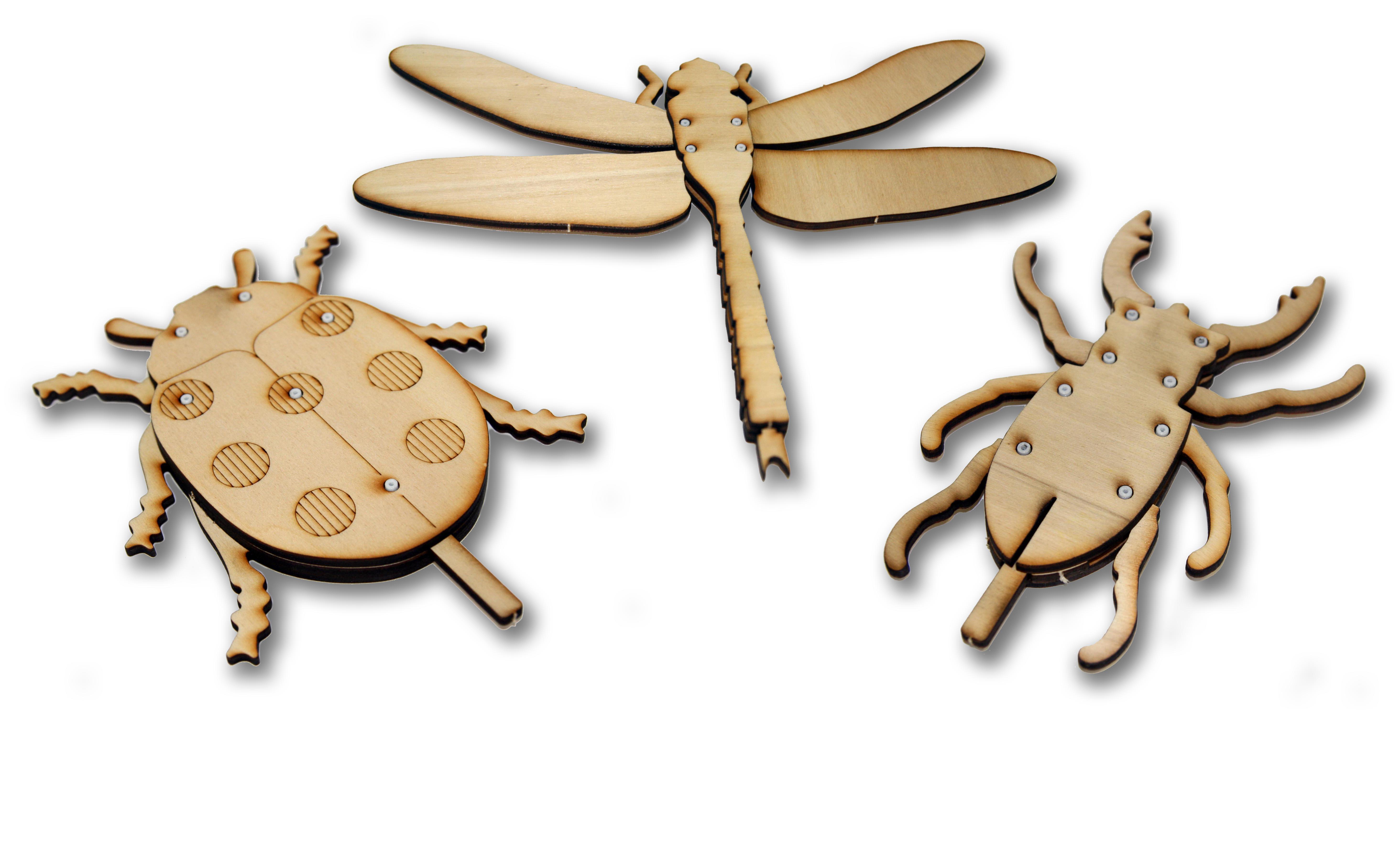 ROTOPLAY  –  Il gioco-insetto
