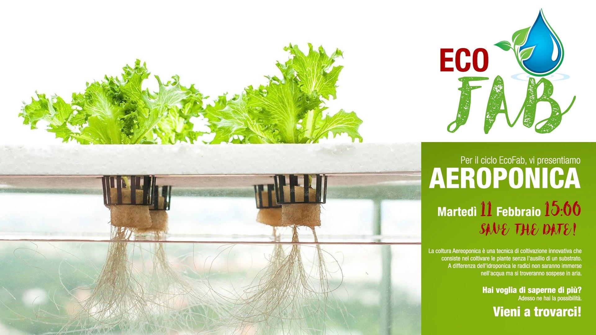 EcoFab – Aeroponica!